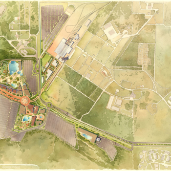 Watercolor Site Plan of Miami Zoo for Forbes Architects